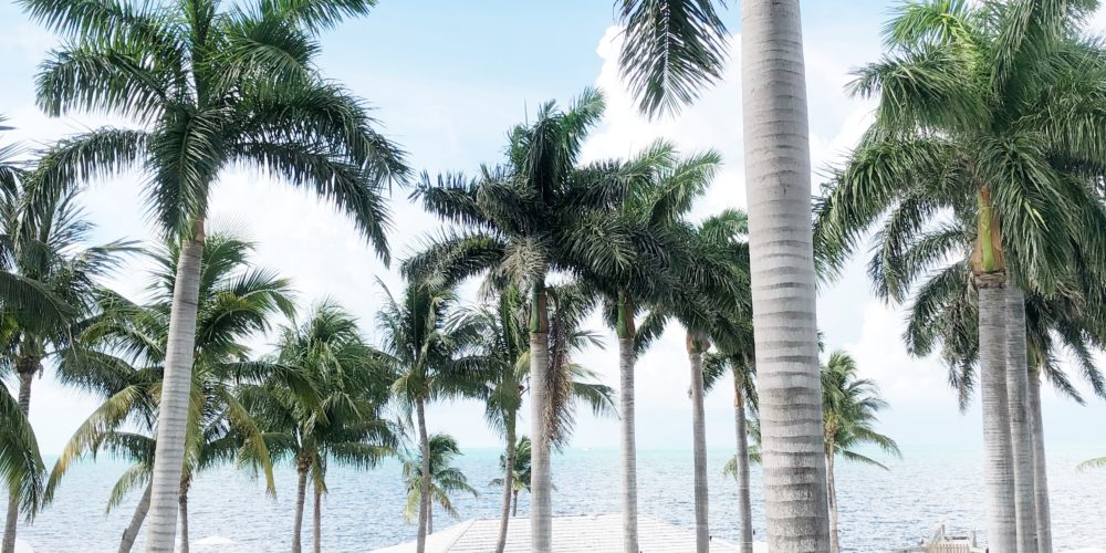 A first timers guide to the Florida Keys