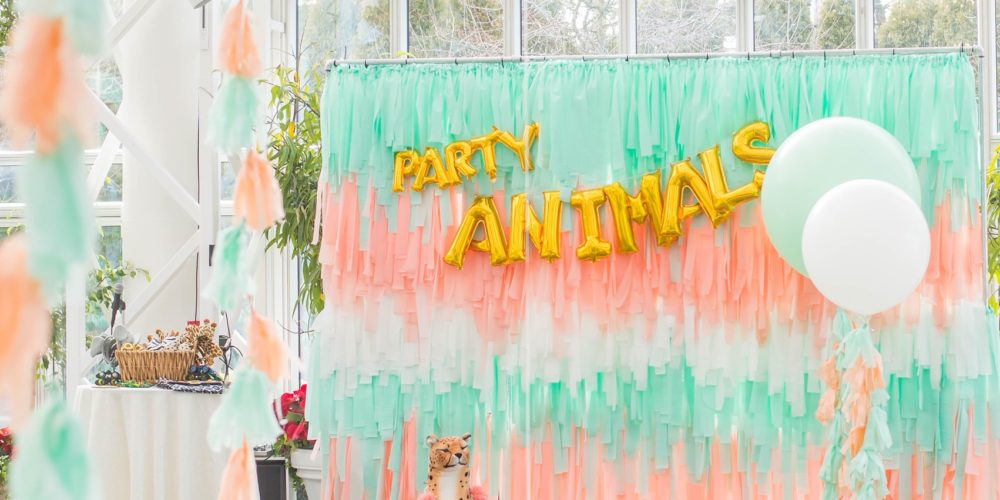 DIY Fringe Party Backdrop